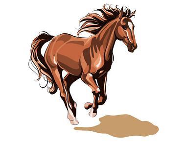 假如只剩下三天寿命,属马怎么过